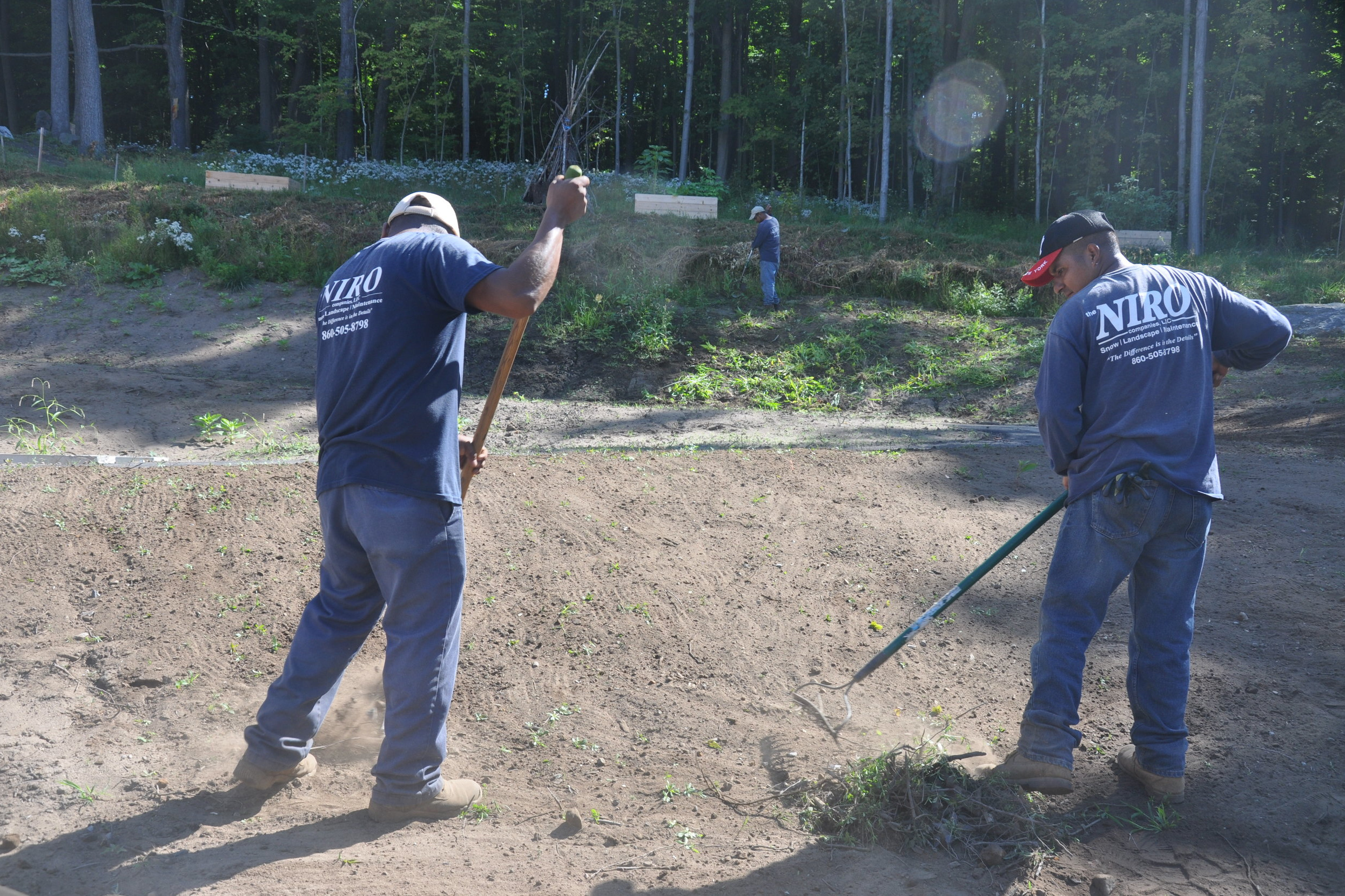 Niro Crew preping top soil for seed.jpg