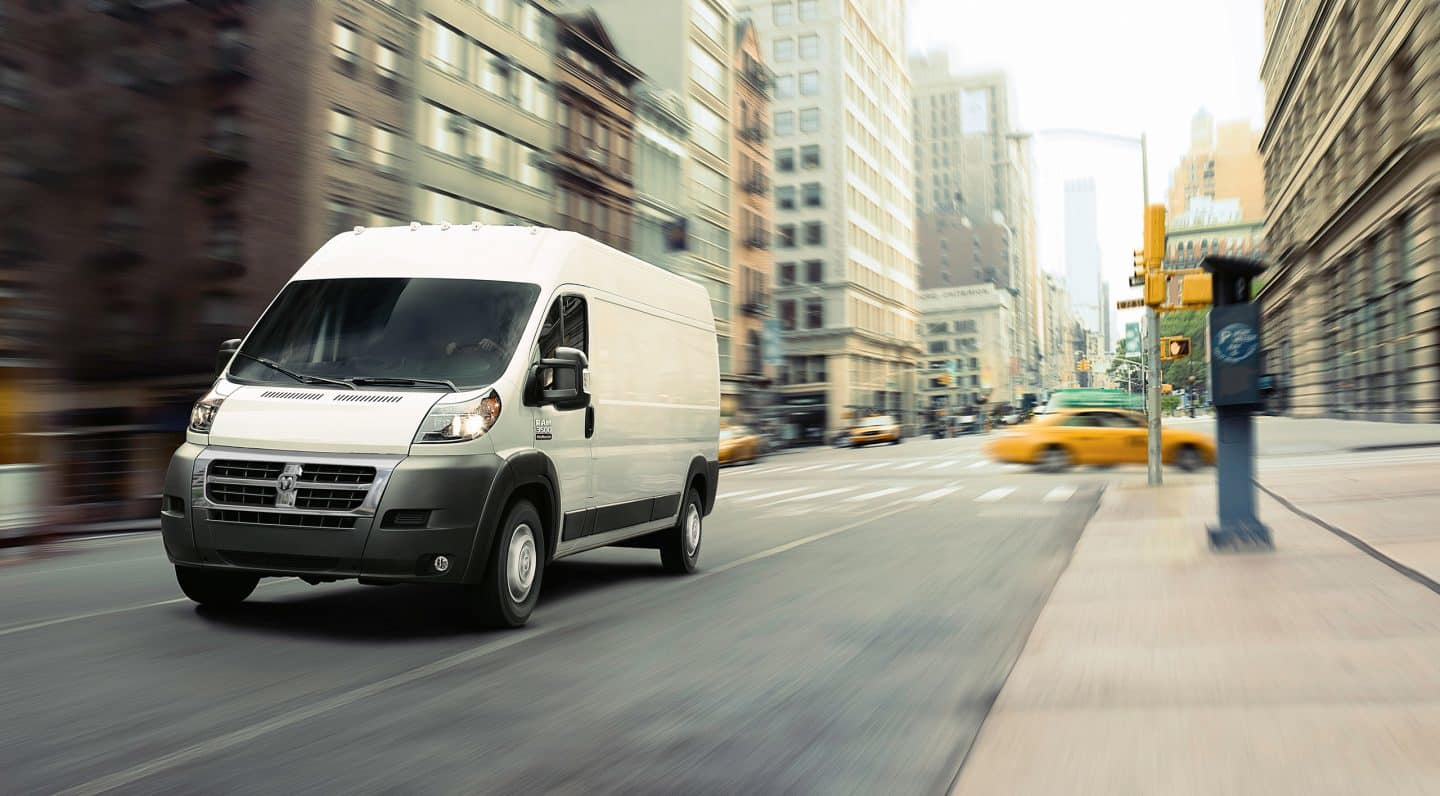 WINDOW COVERS:  RAM PROMASTER