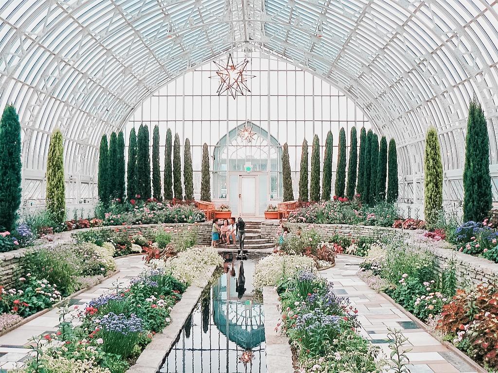 conservatory_of_flowers1 2.JPG