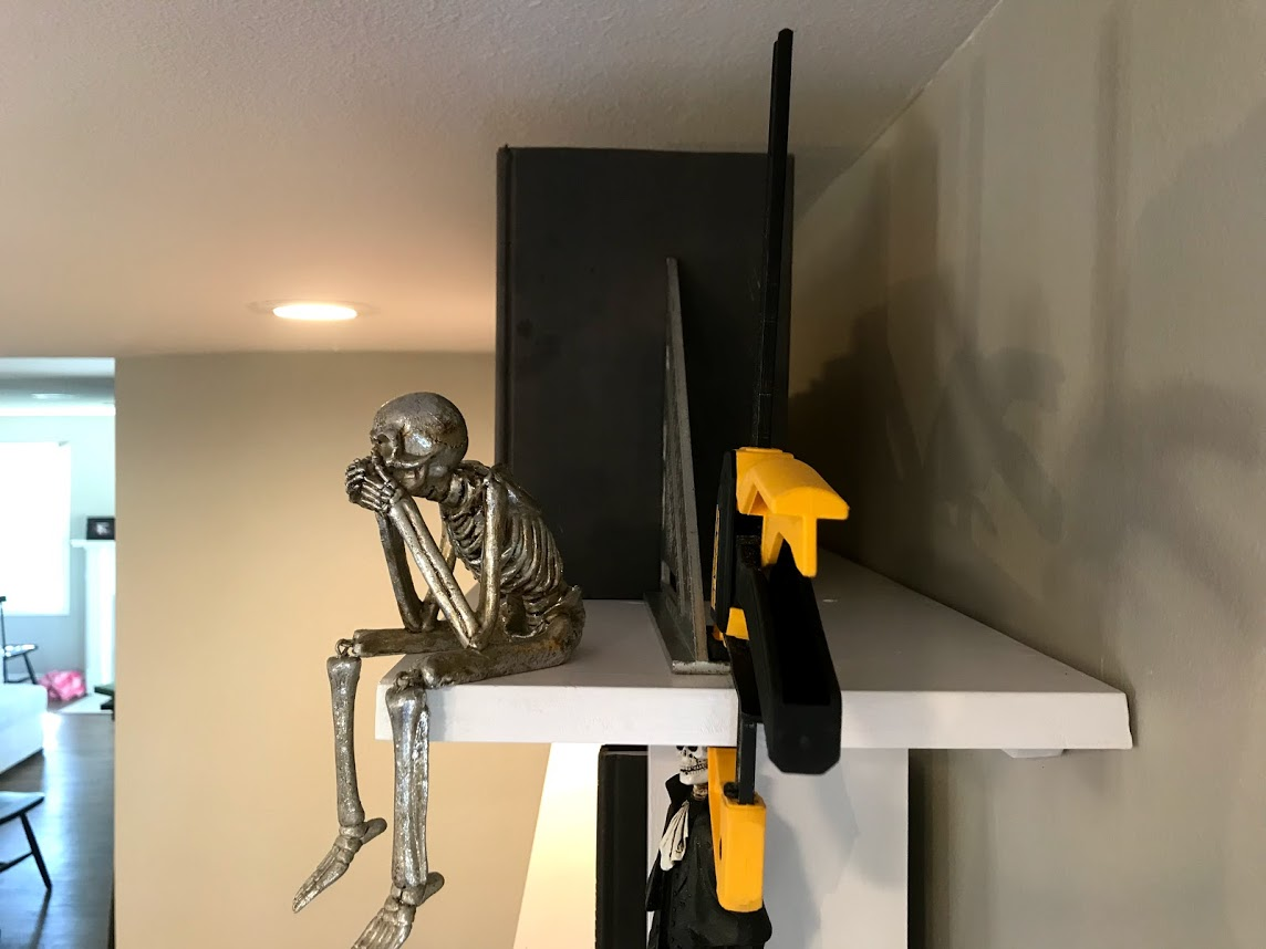 shelf10 skull.jpg