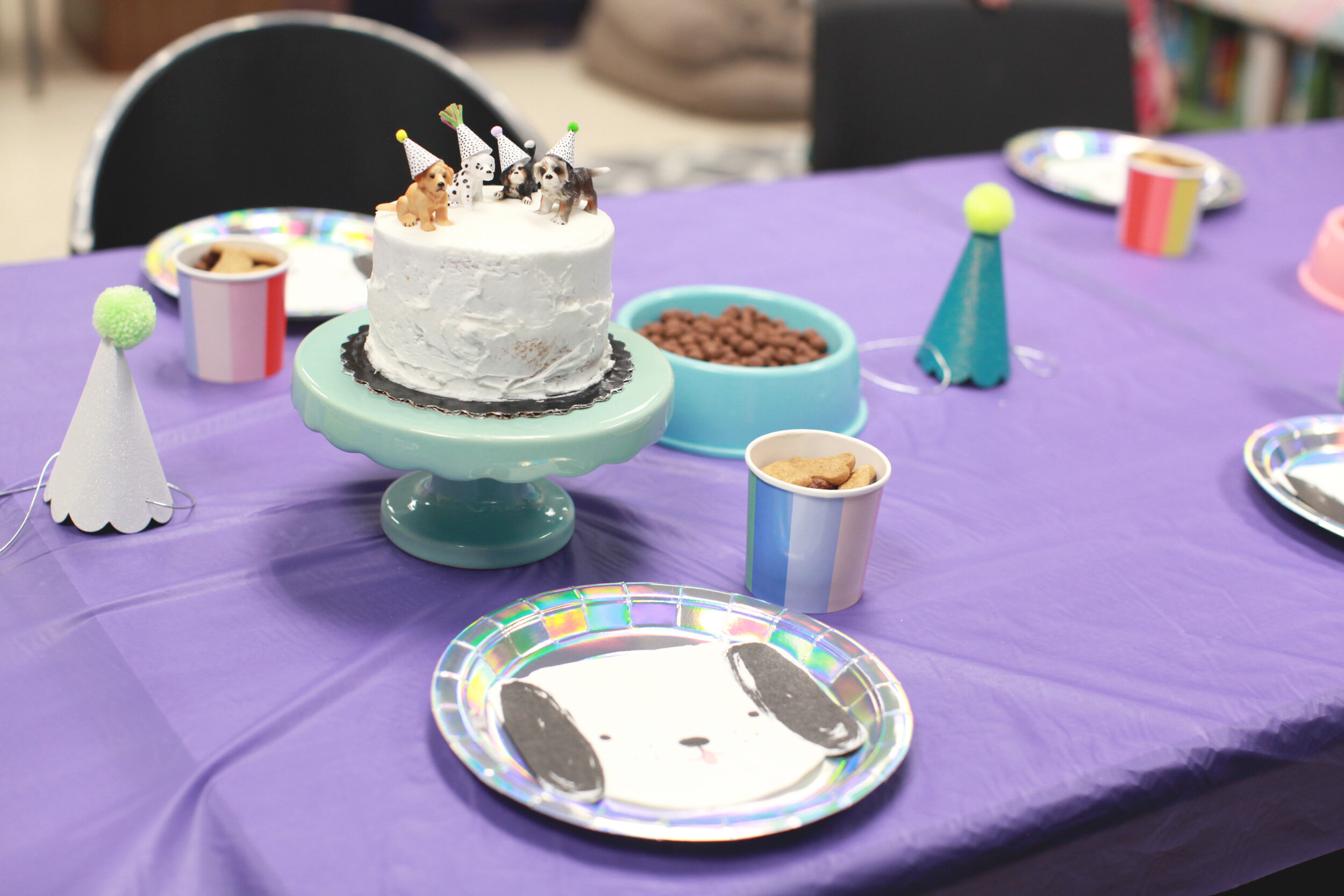 I had Cocoa Puffs and Scooby Snacks with the cake to look like puppy treats for his guests.