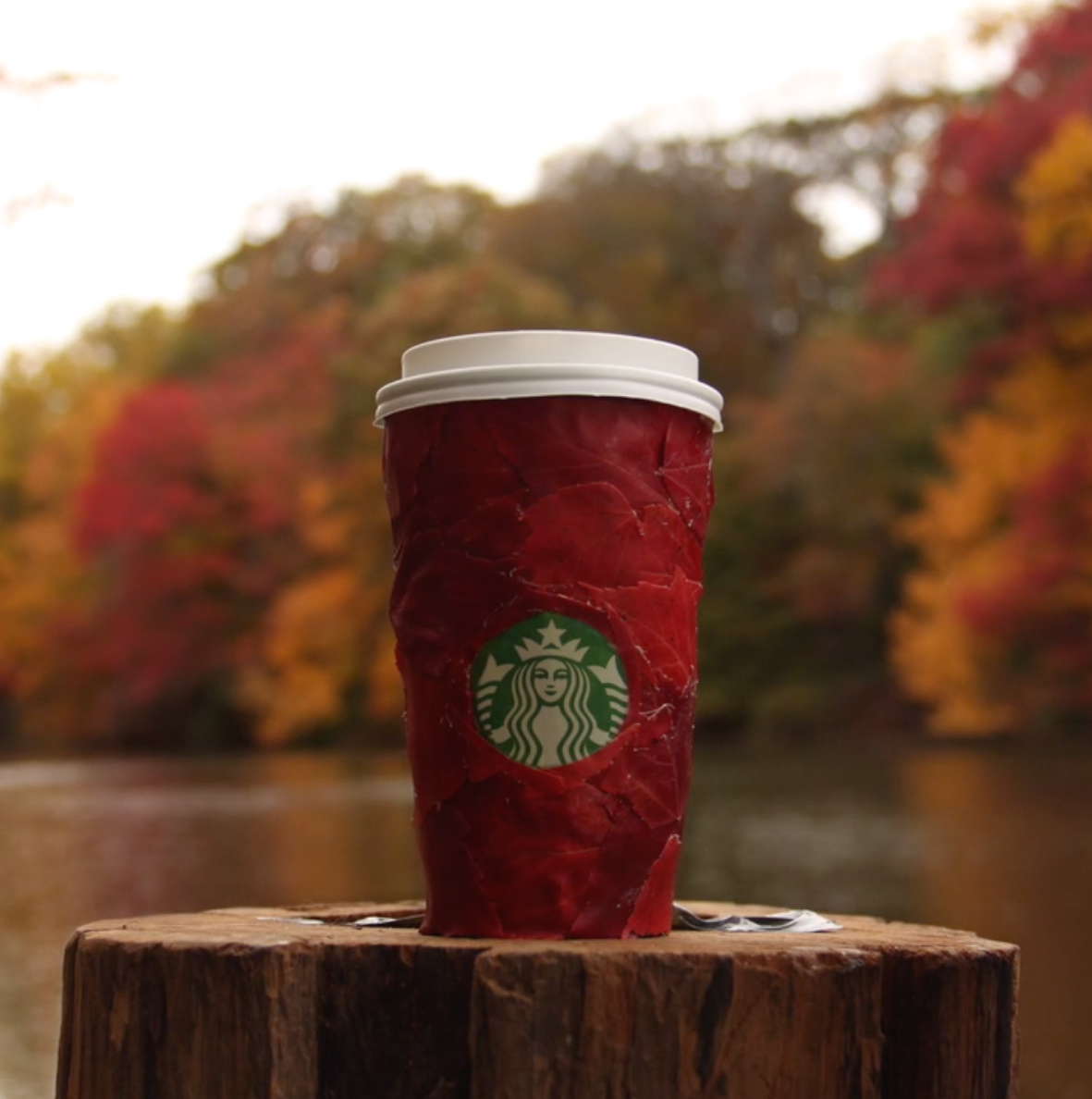 STARBUCKS - RED CUPS