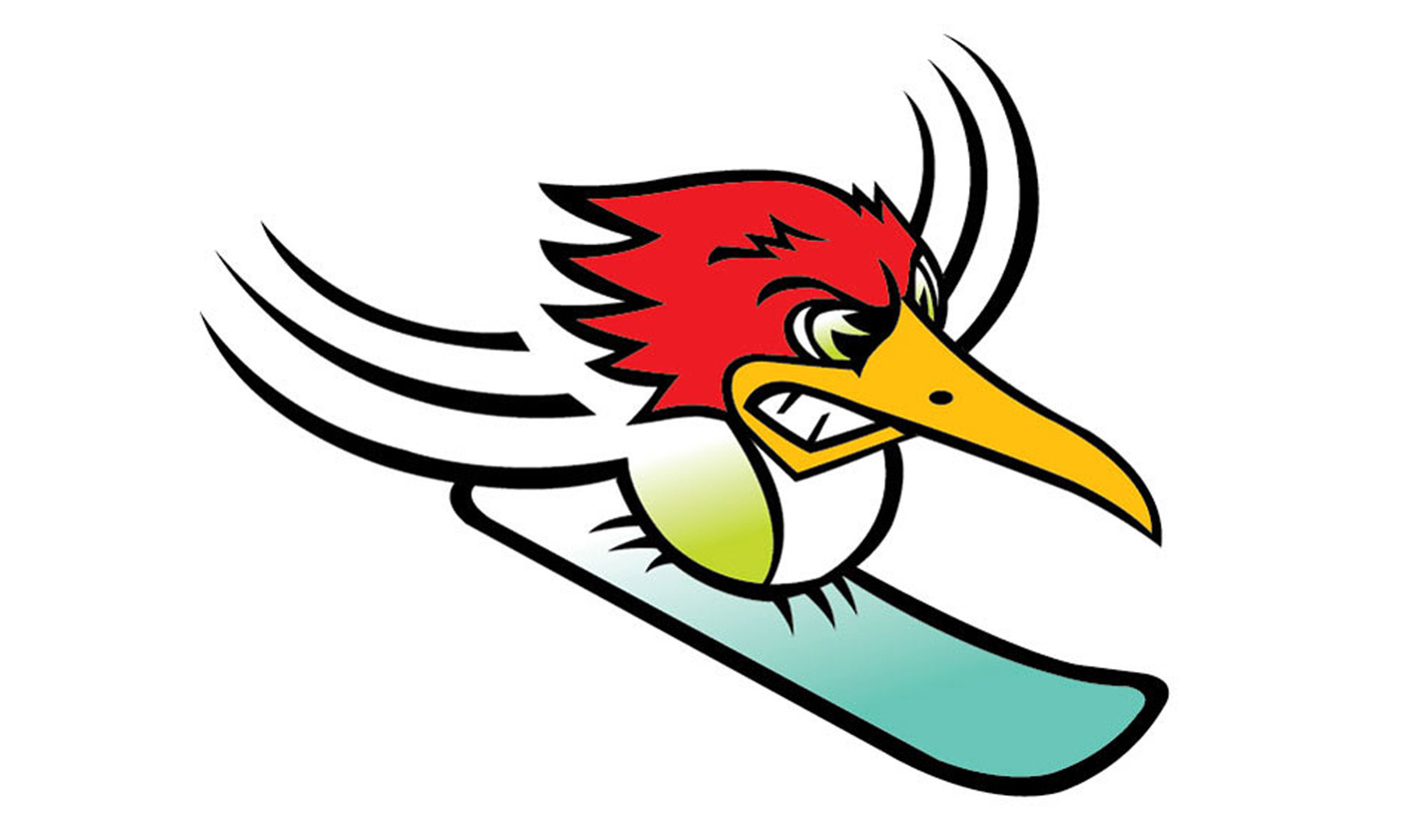 Kelly-Hume-043-Woodpecker.jpg