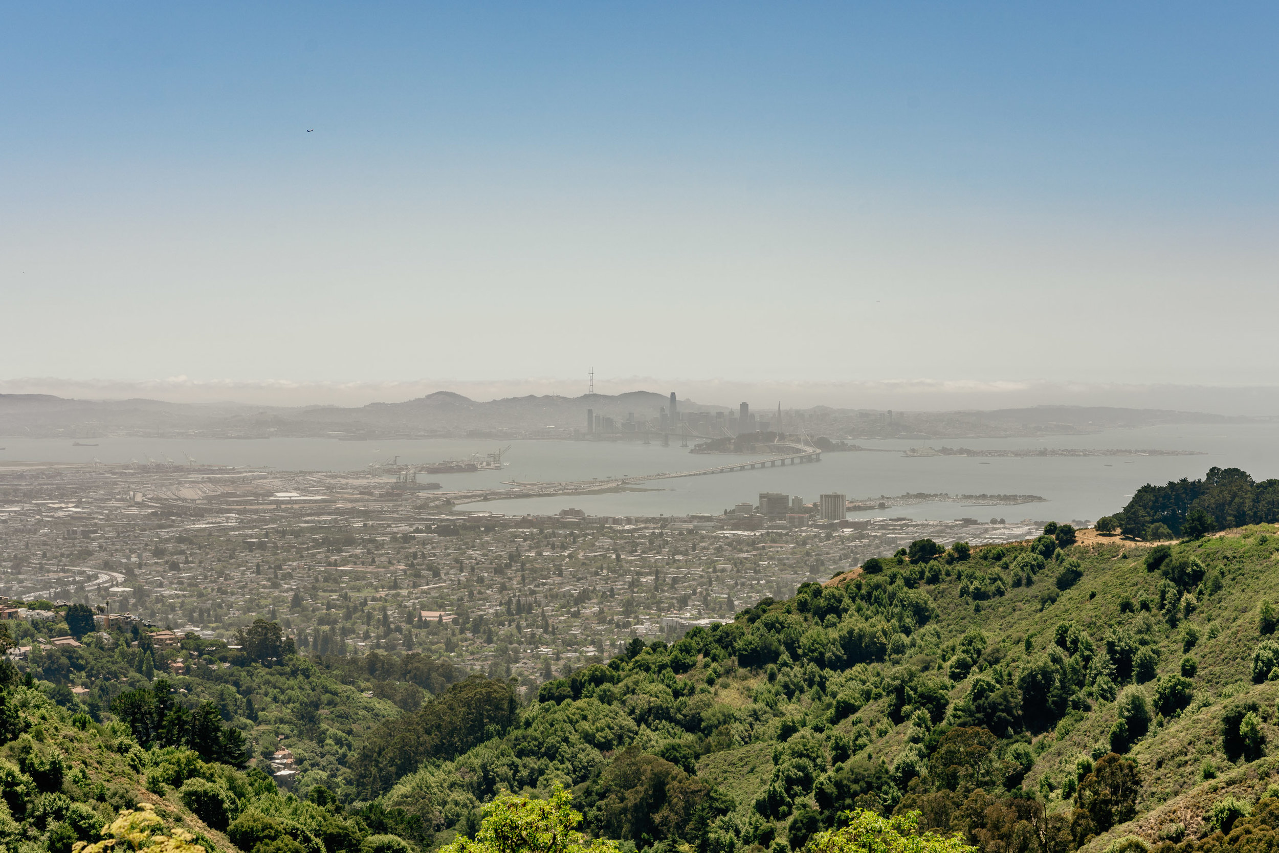 Sweeping views of the San Francisco from Berkeley Hills.