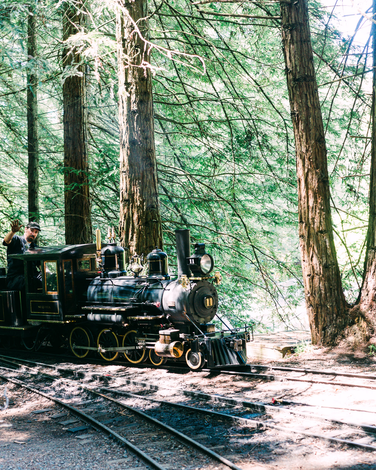 Miniature train ride in Tilden park, just a quick drive from Claremont Hotel