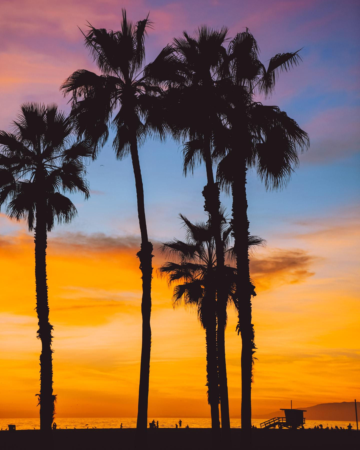 sasha@sanfrancisco-california-20.jpg