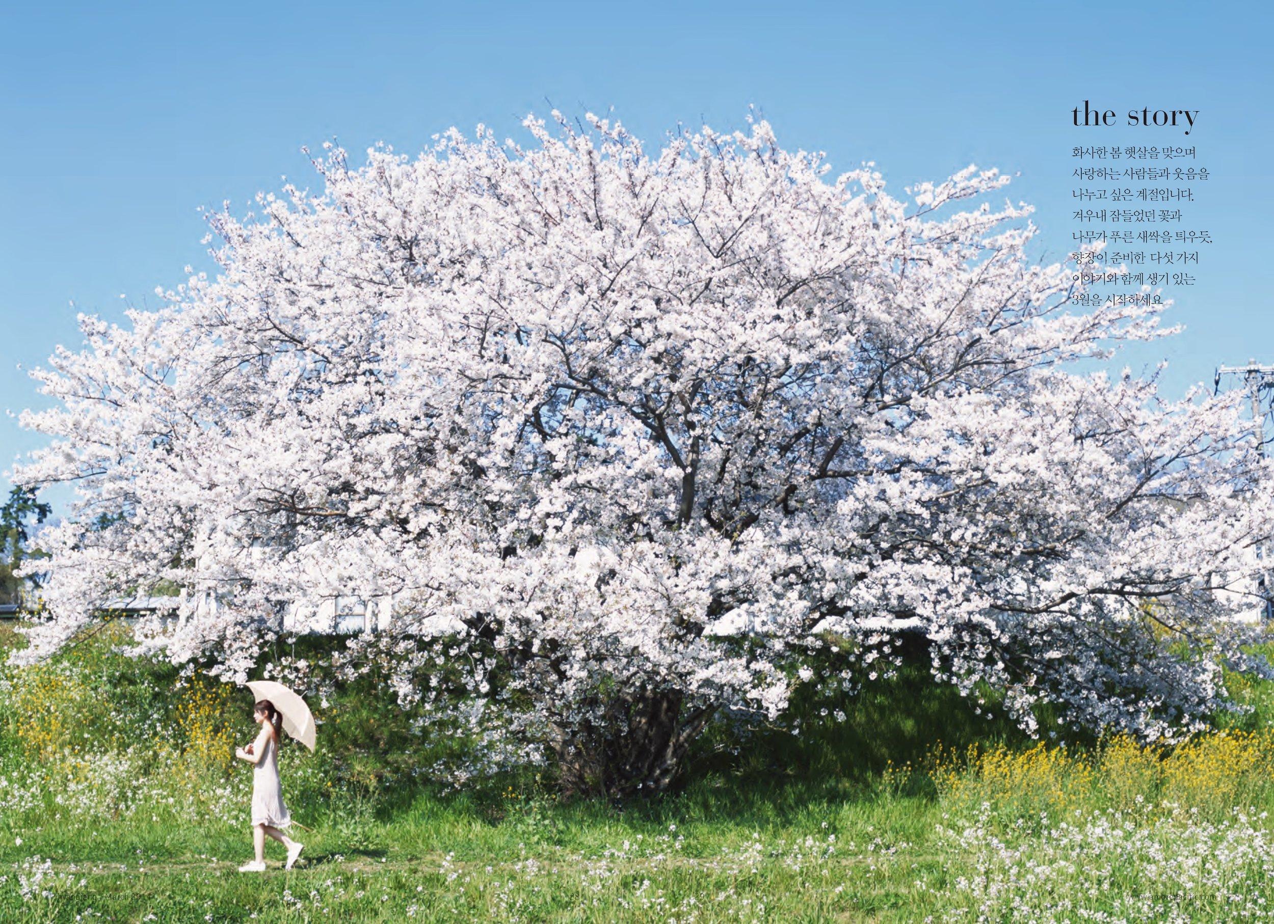 hyangjang-201403_페이지_17.jpeg