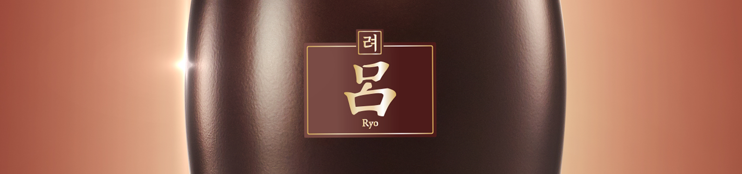 3.0_Ryo_top.png