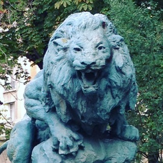 . Through the Lions Gate, we will enter a time of the warm Leo sun rays, drenching ourselves with opportunities to leave the old behind. There is a lightness in the air, but know that we will also still be purging the old Kingdoms within.