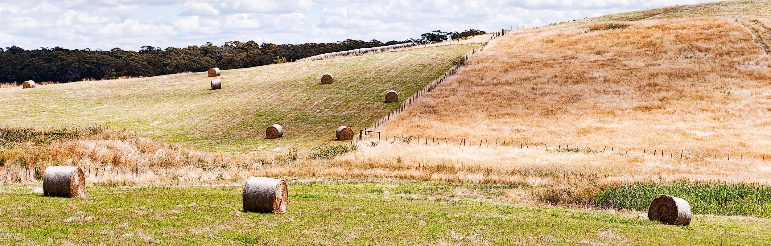 Australia-John Bardell-3409a.jpg
