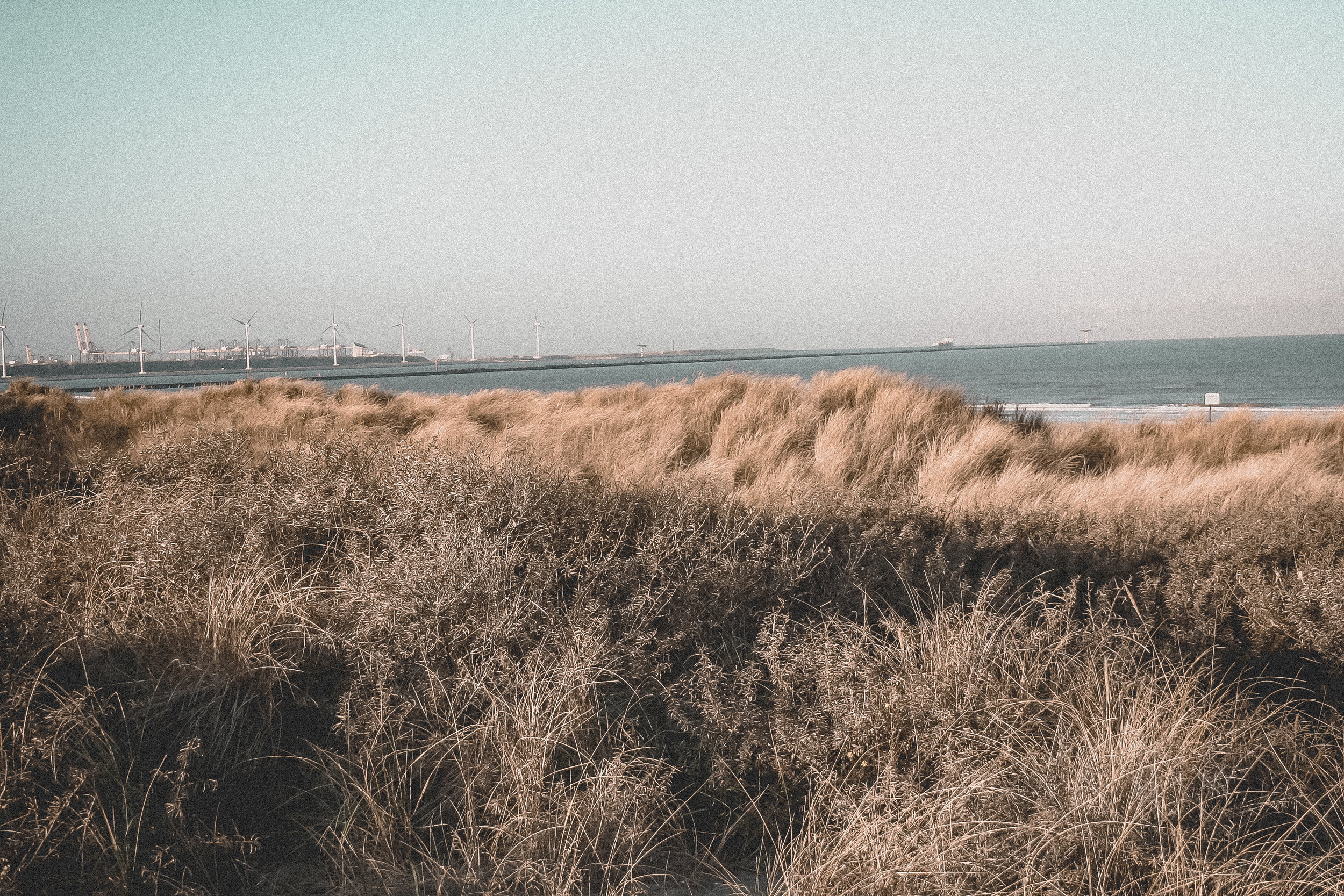 Vintage Beach Life by paperheartpolaroids (6).jpg