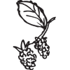 boutique-holiday-cottage-totnes-berries.png