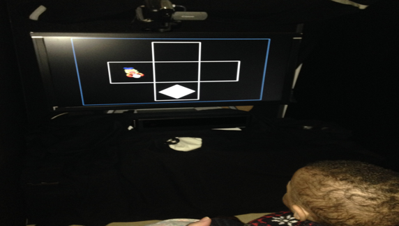 Infant participant doing an eye-tracking task