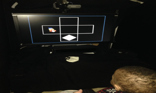 The eye-tracking system, attached below the monitor, records infants' eye movements while they view the images on the screen.