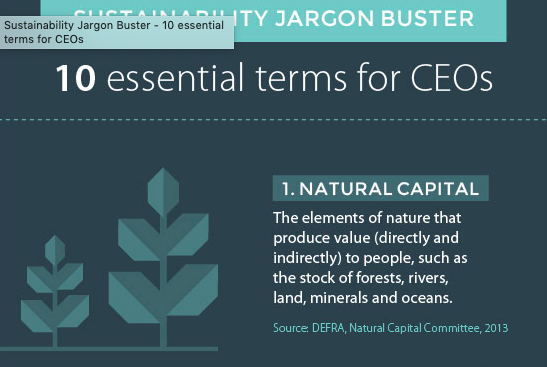 Sustainability-Jargon-Buster.png