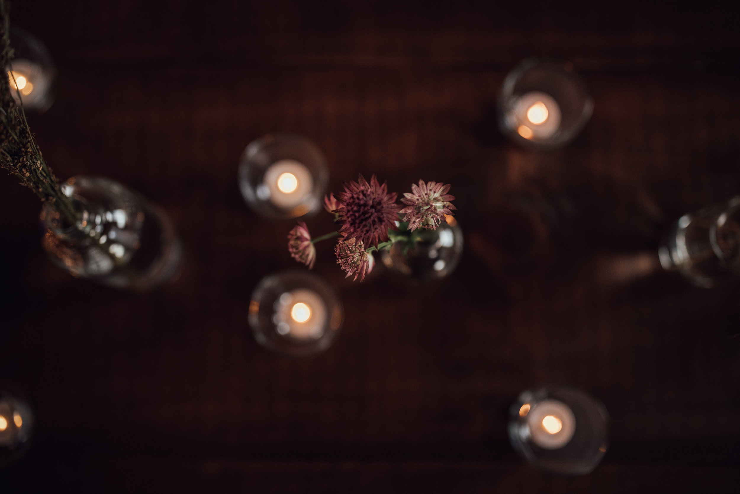 Allyson-Steve-Wedding-Reception-135.jpg