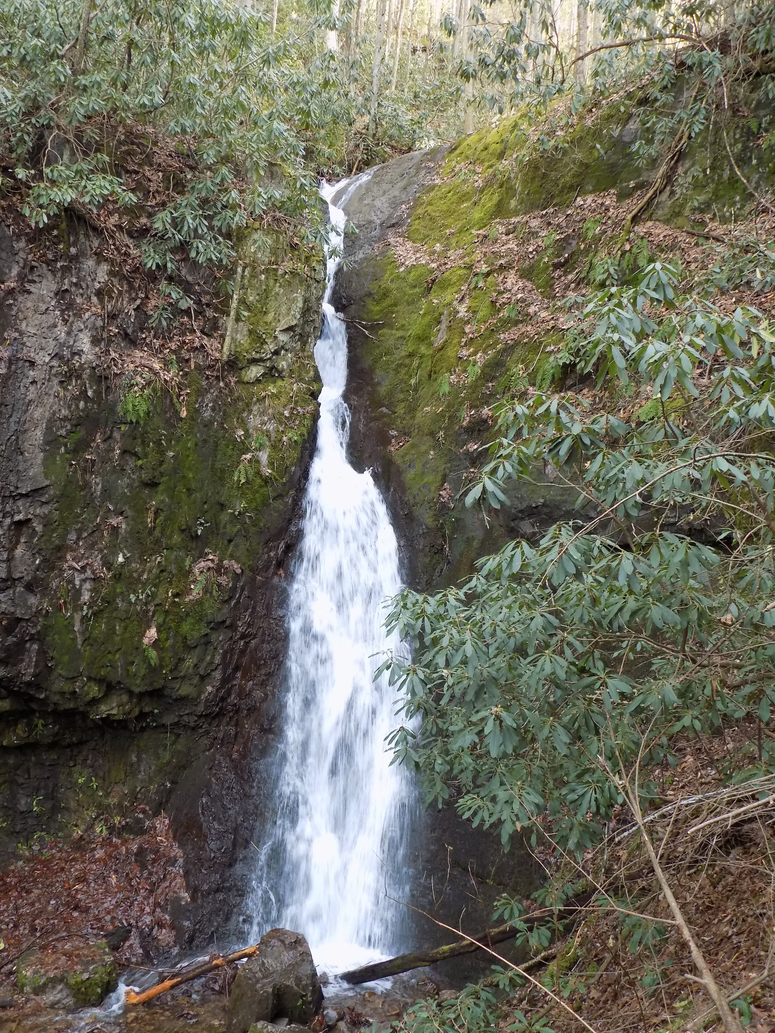 backbone falls - Walk out over the unique rock tunnel, and then enjoy a short hike to view the beautiful backbone falls. Excellent photo opportunities of the rock tunnel, on top of the rock, and the falls. Picnic and swimming opportunities are available as well in the picnic area as Beaverdam creek flows around the rock.