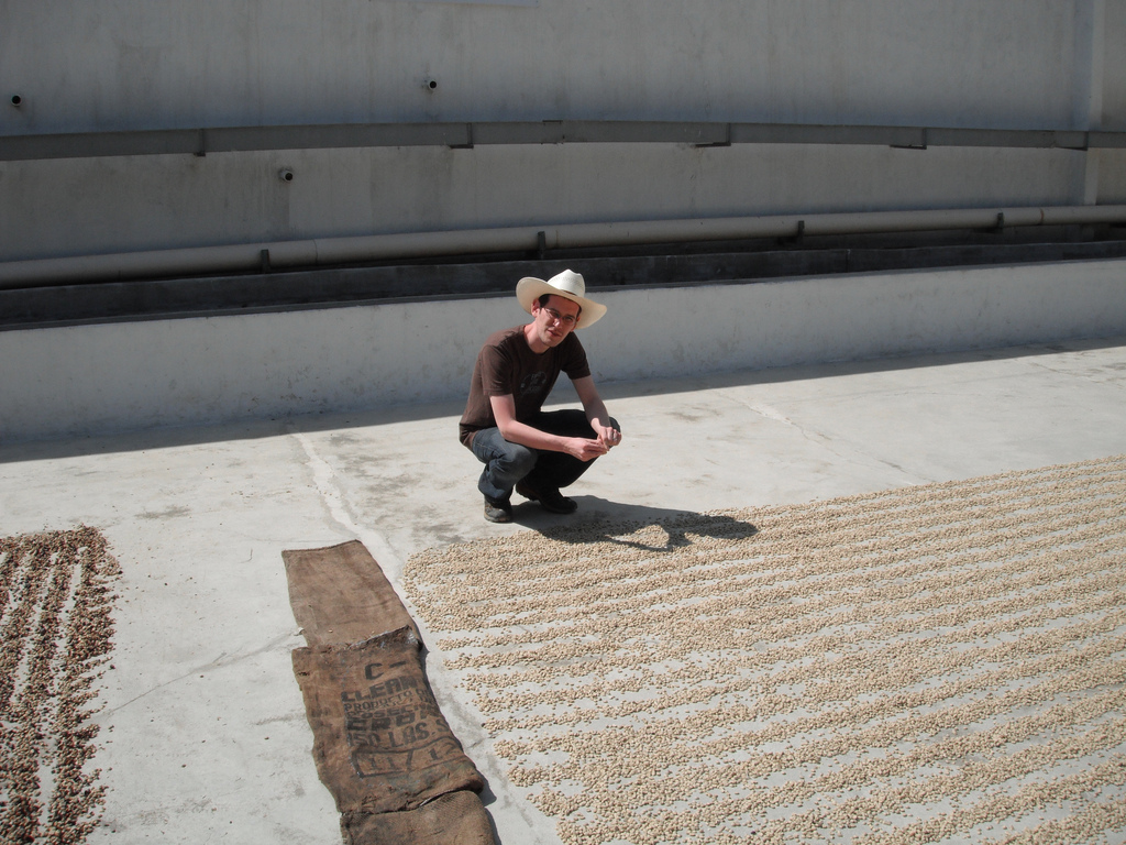 Jaime checking out drying coffee on the patio at Buena Esperanza in 2012.