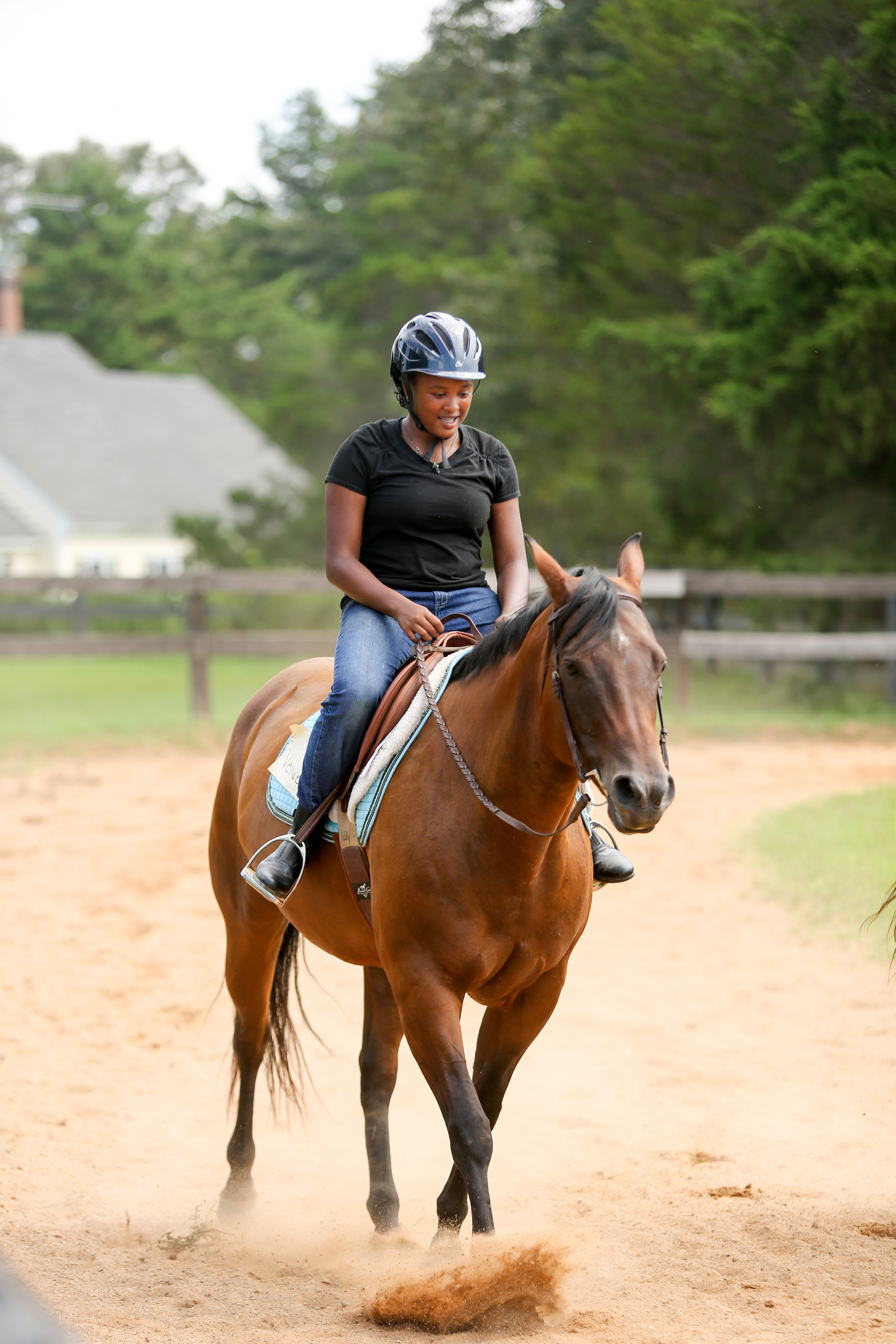 Horses are proven to be helpful therapy animals for children and adults of all ages.