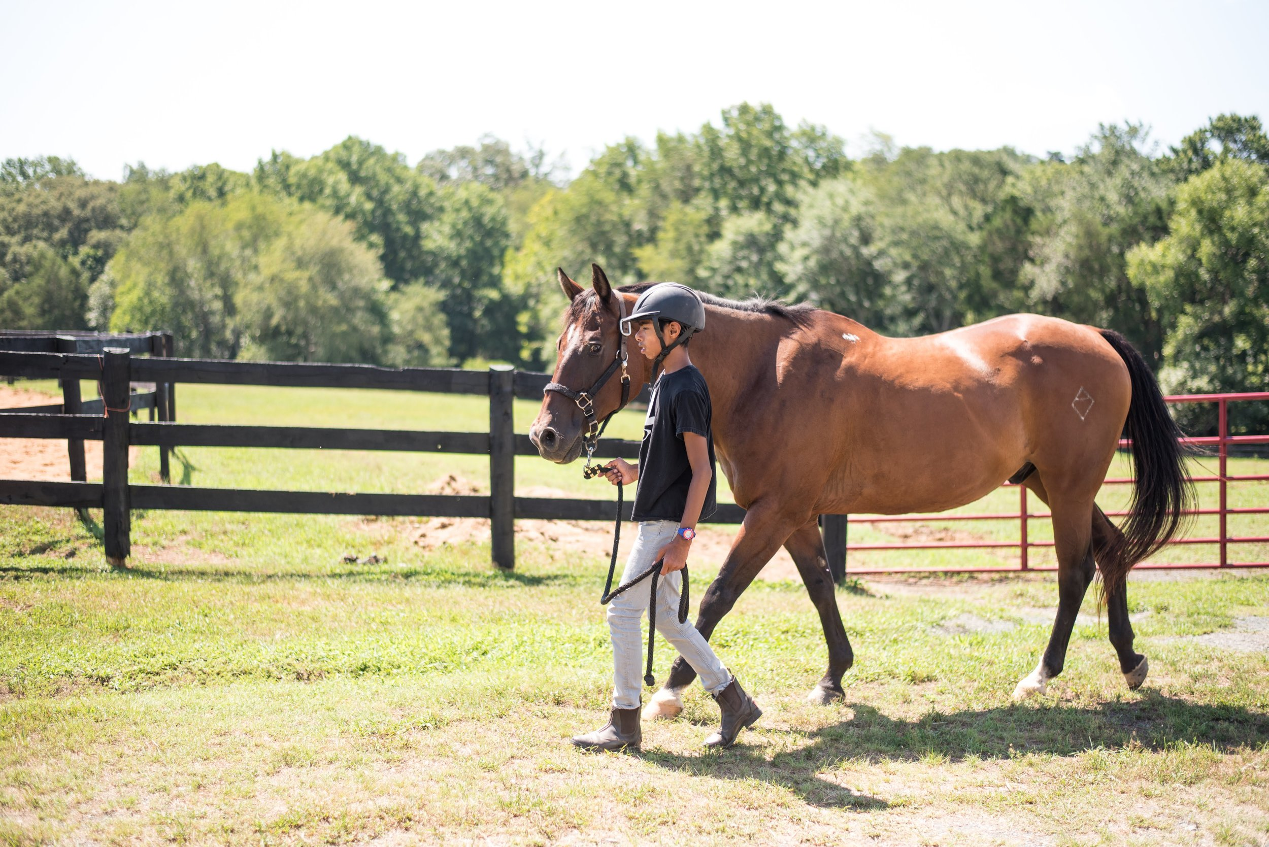 At Oakland School, students have the opportunity to join our equestrian program at any level.