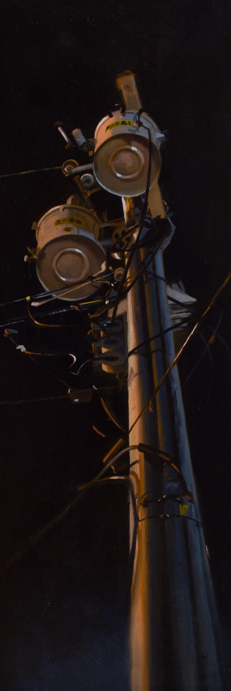 Walker, Steven_The Power of the Night_8x24_oil_$1400.jpg