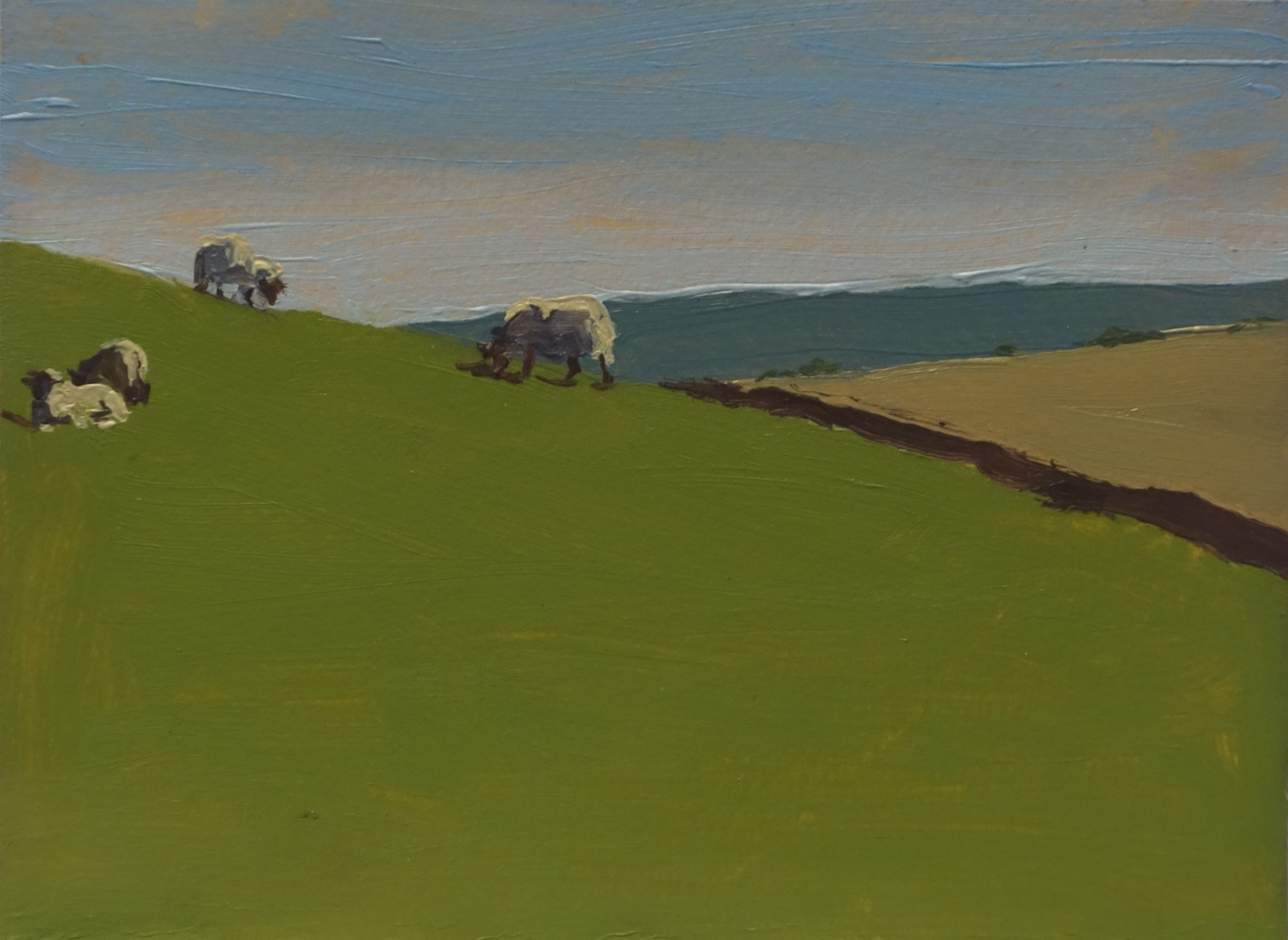 Grazing Sheep in Yorkshire_Oil on Paper_4.5 x 6.JPG