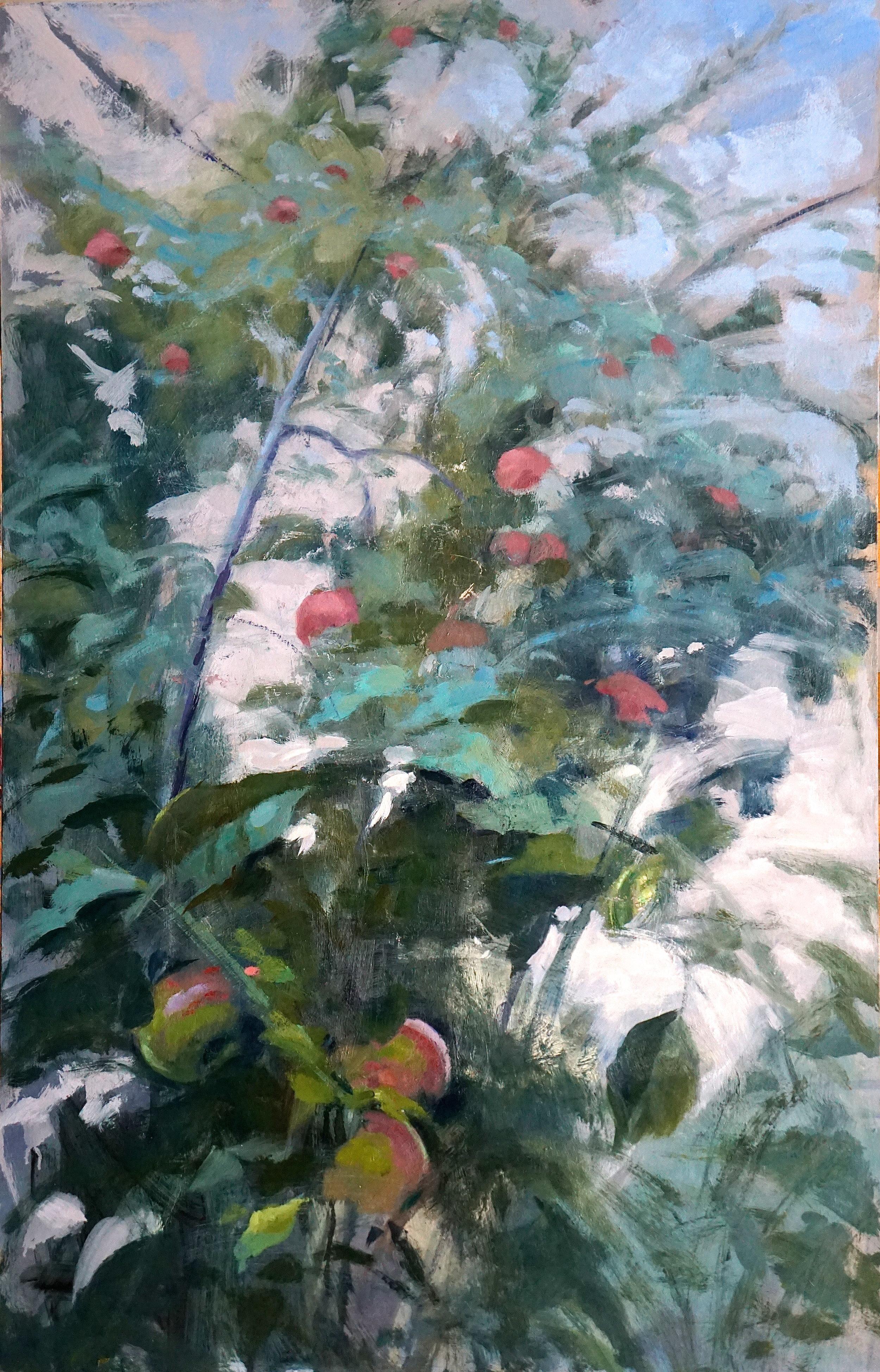 Orchard IV