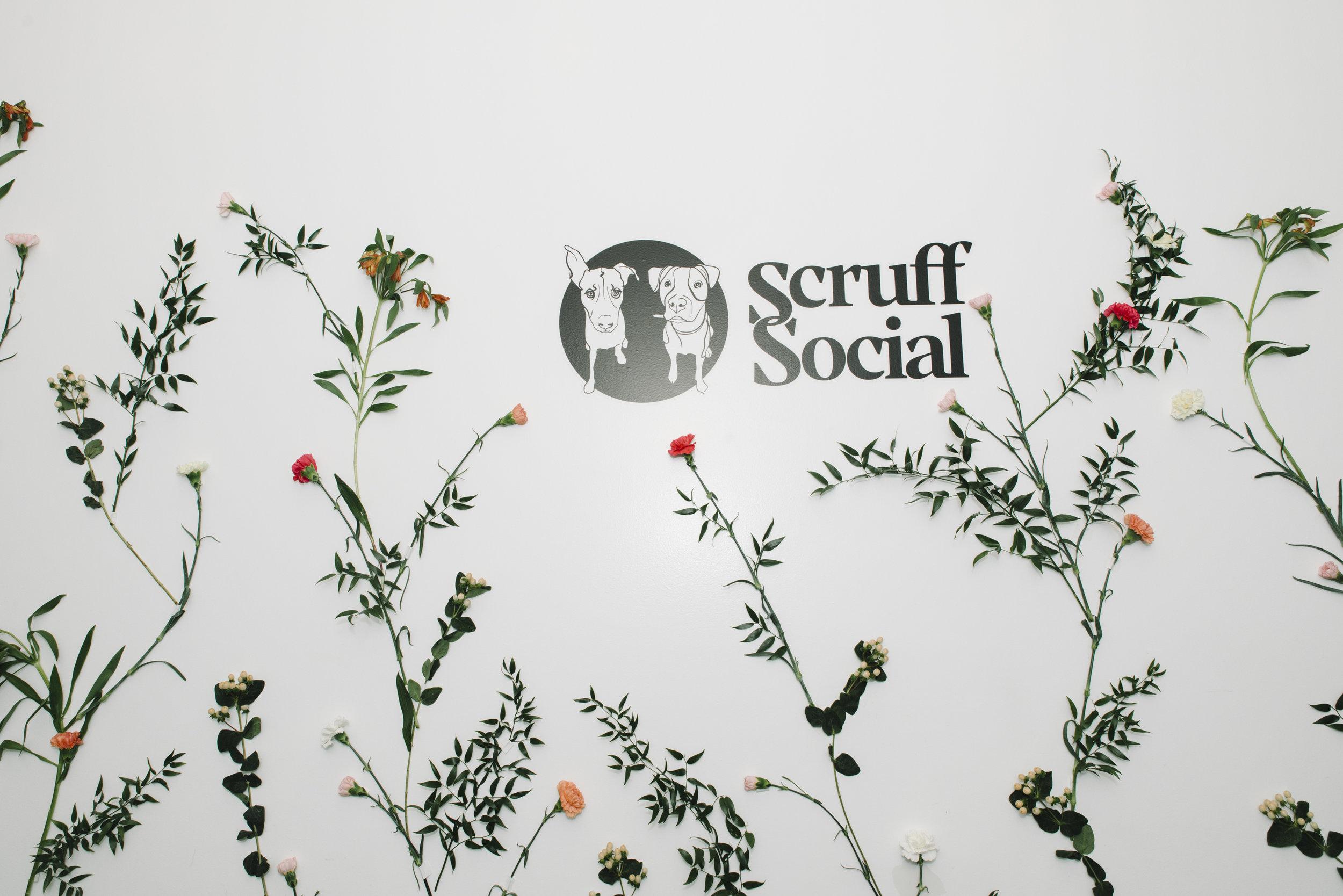 StefEthan-SaveOurScruff-ScruffSocal-SOS-DogRescue-District28Events-D28-TorontoEventPhotographer-Event-SOSDogRescue-11.JPG