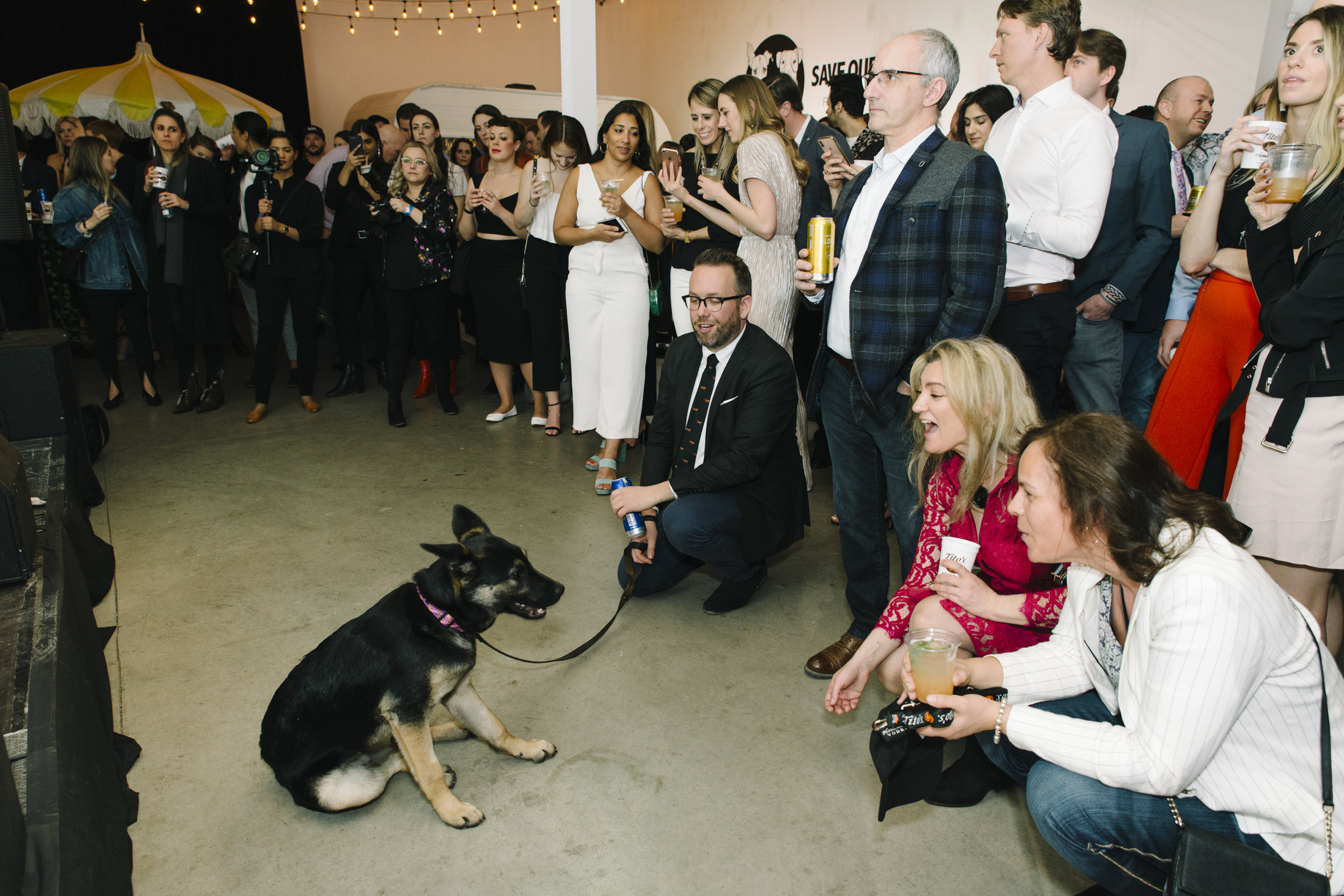 StefEthan-SaveOurScruff-ScruffSocal-SOS-DogRescue-District28Events-D28-TorontoEventPhotographer-Event-SOSDogRescue-50.JPG