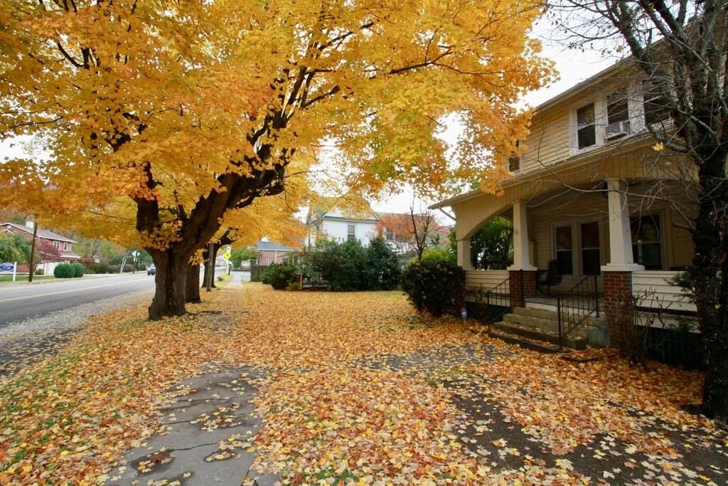 Picture 30 Outside Front of House in Fall.jpg