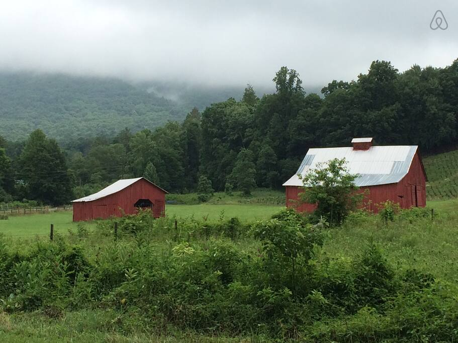 Picture 36 Red Barns.jpg