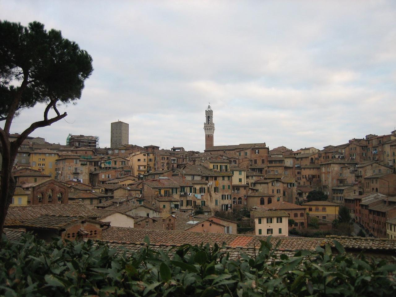 Tuscany - 1 (4).jpg