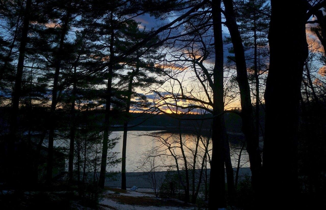 Walden Pond, Concord, Mass. (photo by Rich Higgins)