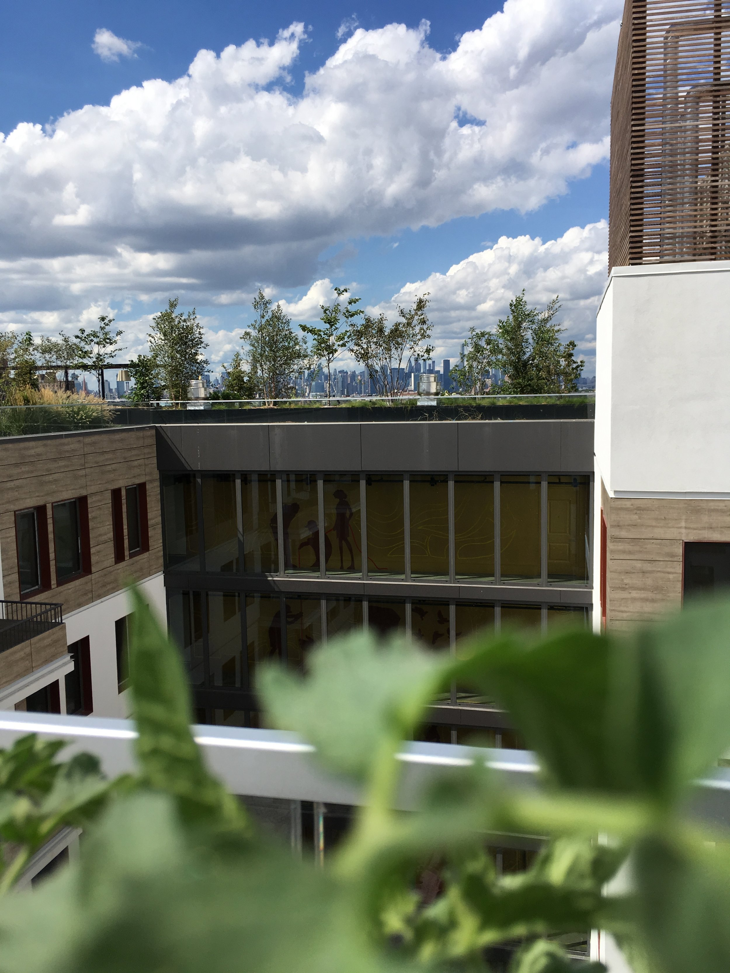 The Denizen - First residential building in NYC to have a rooftop Farm Amenity operated by Green Food Solutions.