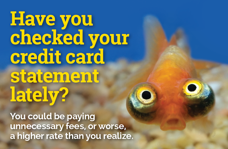 Have you checked your credit card statement lately? You could be paying for unnecessary fees, or worse, a higher rate than you realize.
