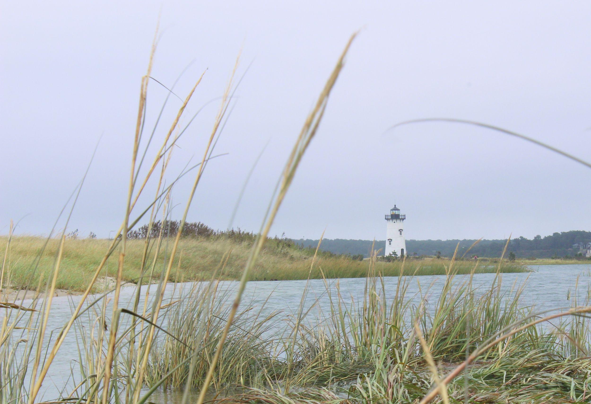 Edgartown_Lighthouse_Beach_Sea_Grass_Sand_Ocean.jpg