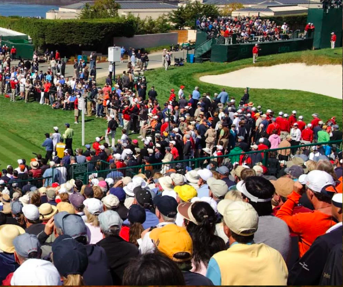 The Experience of the US Open, Carmel Dog Walkers can take care of your Pet while you're at the Golf Tournament.