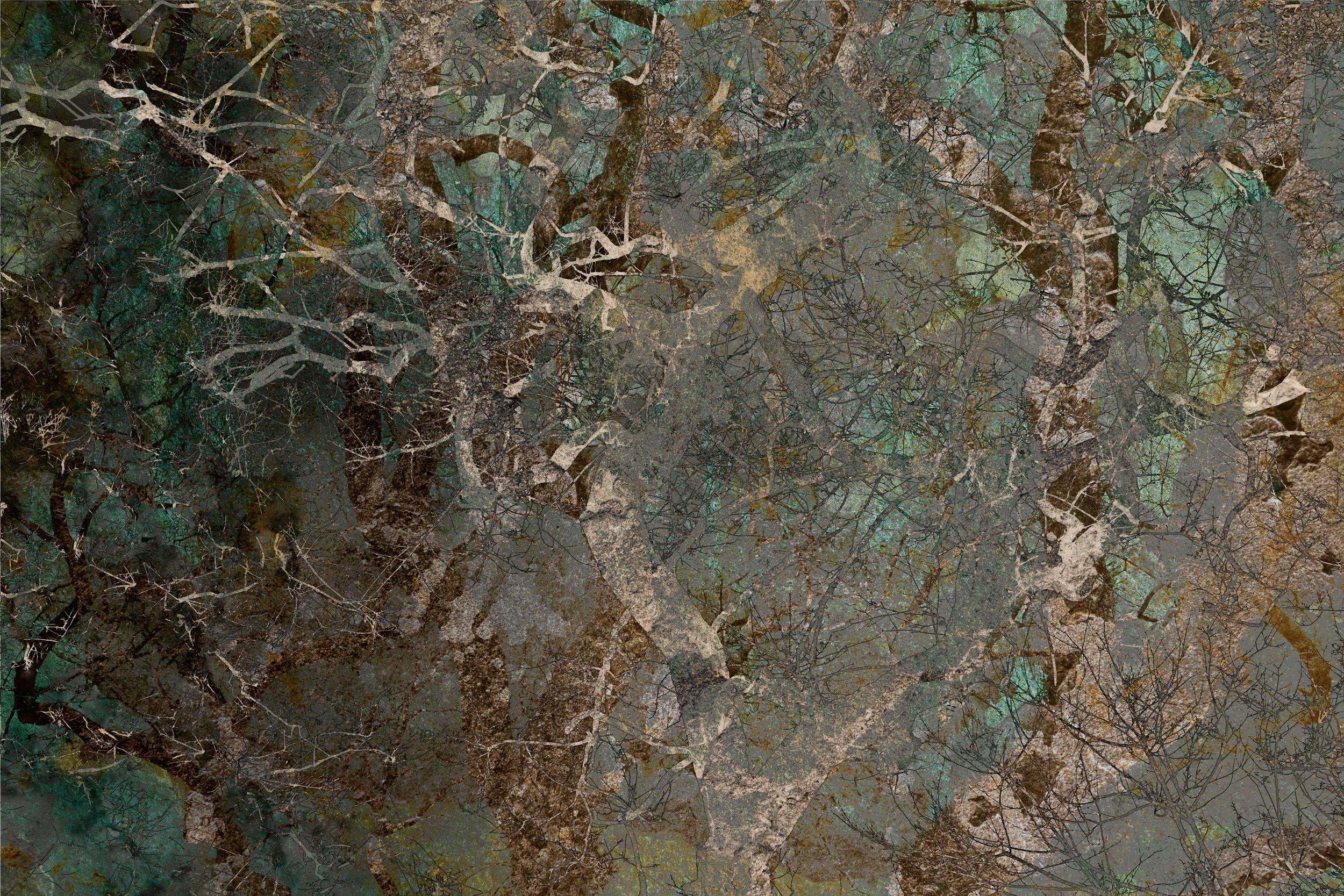 Árboles Desapareciendos I / Disappearing Trees I