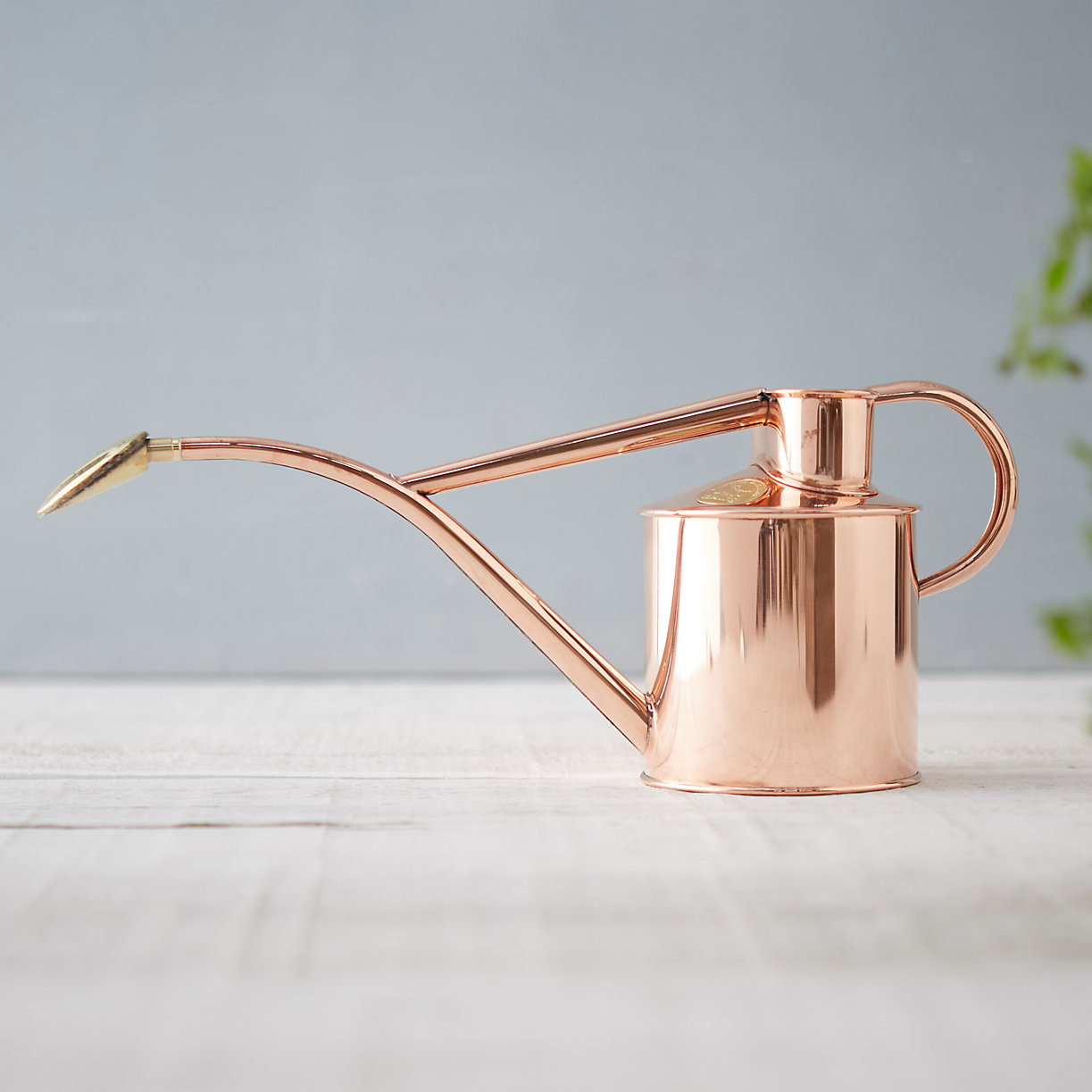 Copper Watering Can, $98