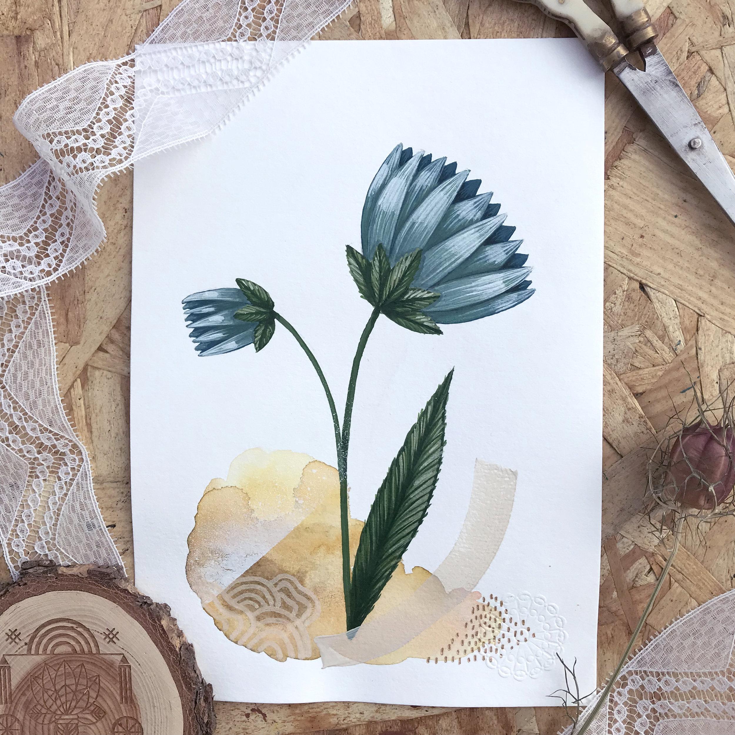 Haslum Iris  from Botanic garden, Herbarium - Mix media   2018