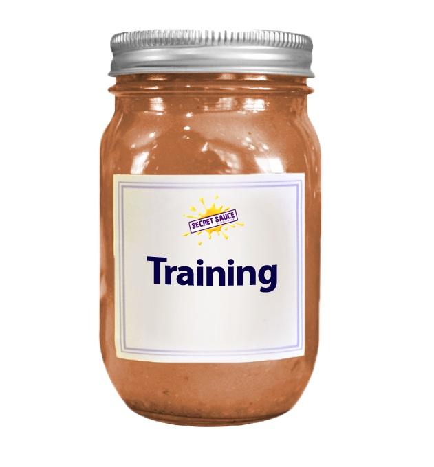 Training+and+mentorship.jpg