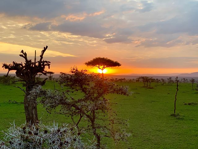 """""""Africa – You can see a sunset and believe you have witnessed the Hand of God..."""" - Jodi Picoult⠀⠀⠀⠀⠀⠀⠀⠀⠀ .⠀⠀⠀⠀⠀⠀⠀⠀⠀ . ⠀⠀⠀⠀⠀⠀⠀⠀⠀ #lifebeyondaids #careforaids #orphanprevention #everydayafrica #lifebeyondstigma #beyond #magicalkenya #igkenya #eastafrica #passionpassport #thatsdarling #empowerment #economicempowerment #actjustly #lovemercy #walkhumbly"""