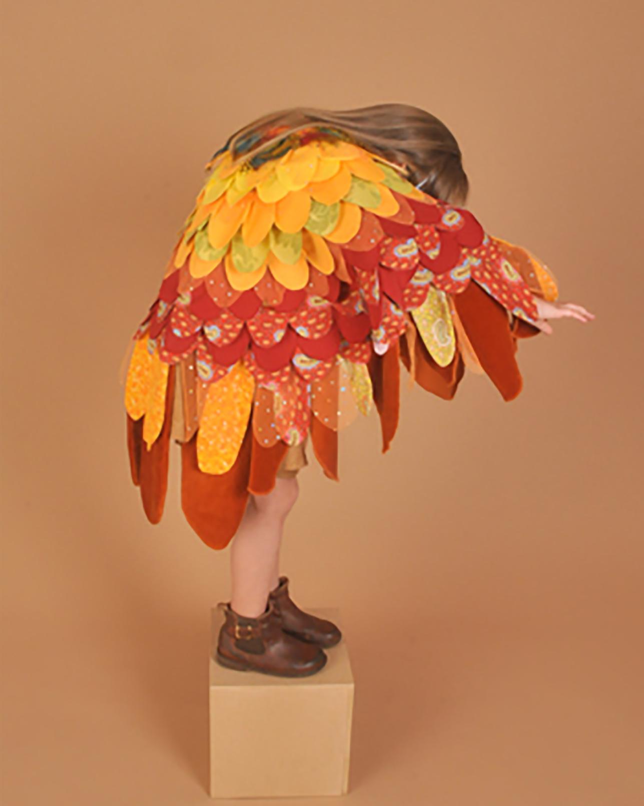 orangebird1.jpg