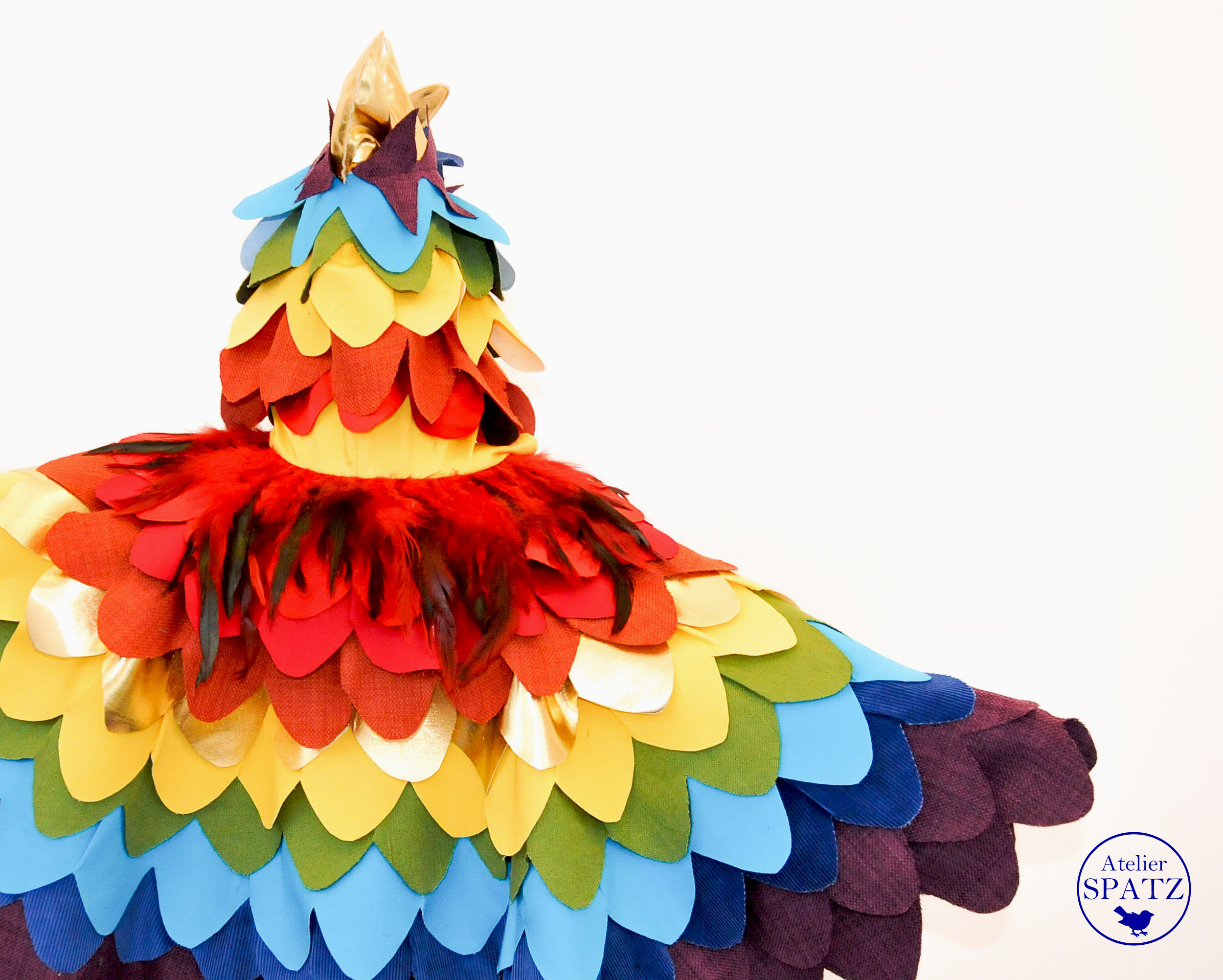 RainbowBird-2.jpg