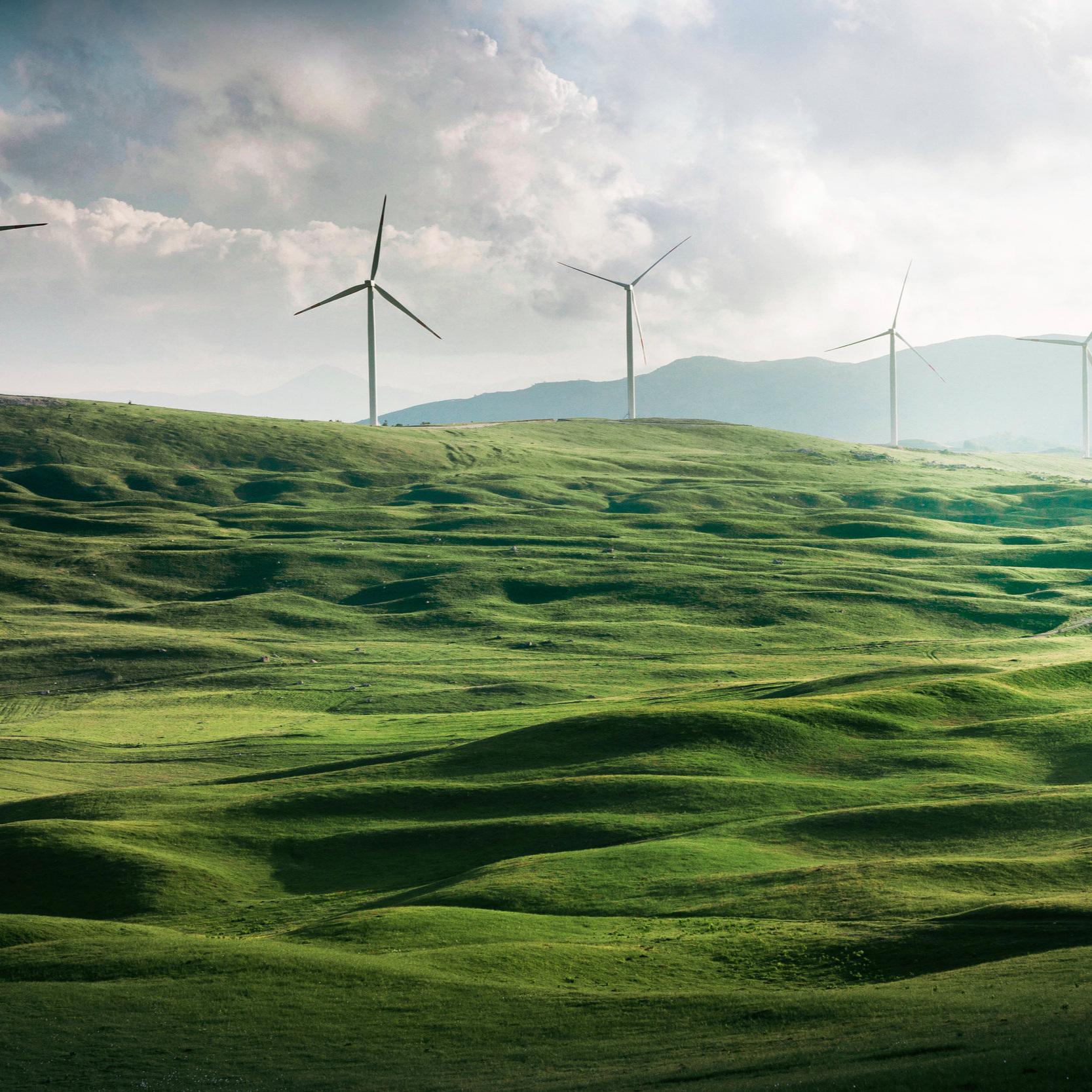 UN Climate Change -