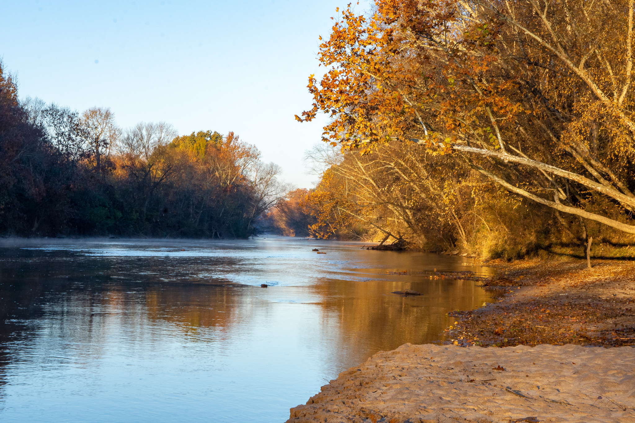 An awesome Thanksgiving morning by myself with my camera
