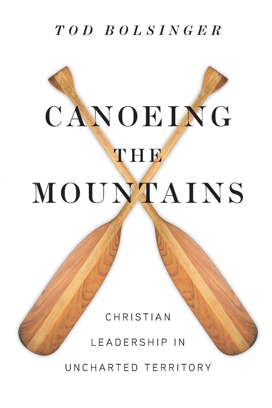 [4] Canoeing the Mountains: Christian Leadership in Uncharted Territory - by Tod Bolsinger