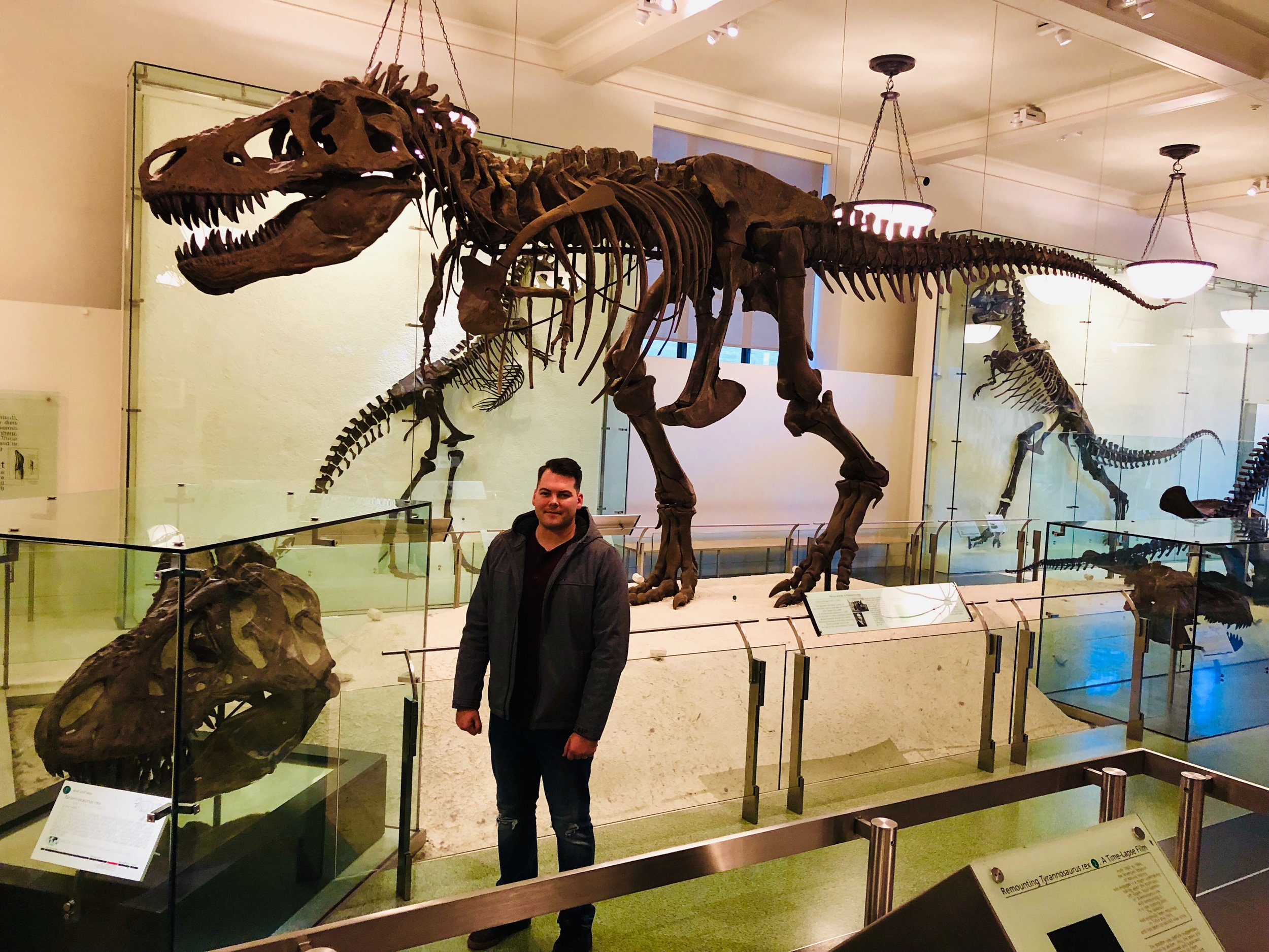 """T - Rex at the American Museum of Natural History. The photo doesn't do the size of this king justice. Keep in mind I'm 6'3. I might have let slip an, """"Oh Shit"""" in front of a nice family."""