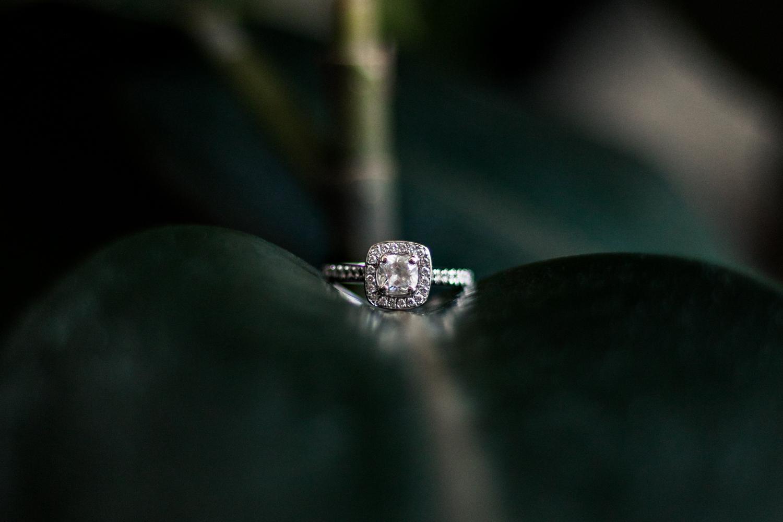 My rings-5.jpg