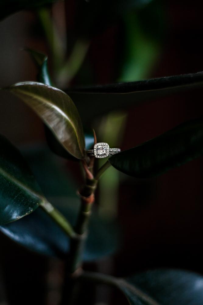 My rings-2.jpg